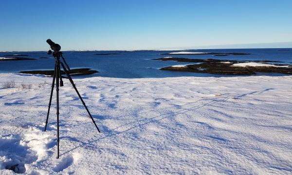 Holberg på Steinsøysundet. Foto: Tore Hals